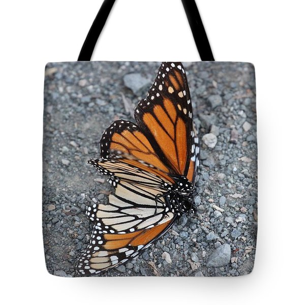 Two Monarchs Aflutter Tote Bag