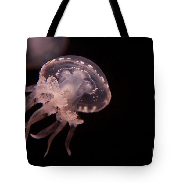 Two Moon Jellies Tote Bag