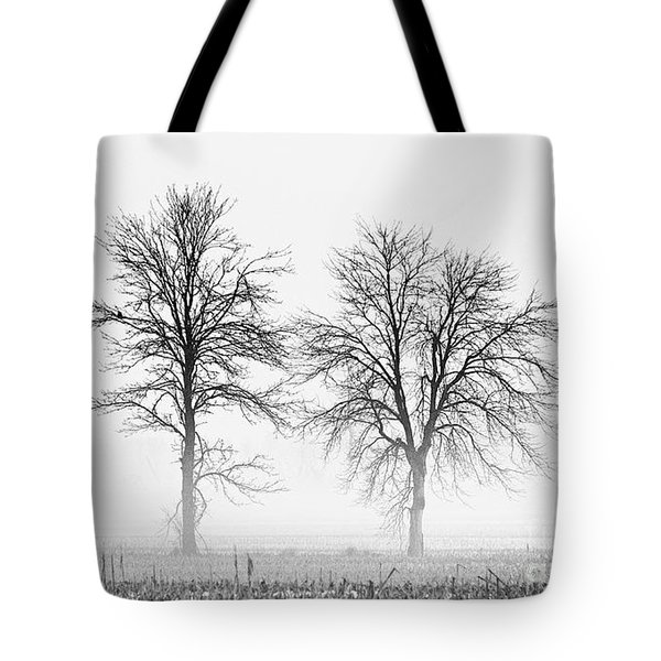 Tote Bag featuring the photograph Two... by Nina Stavlund
