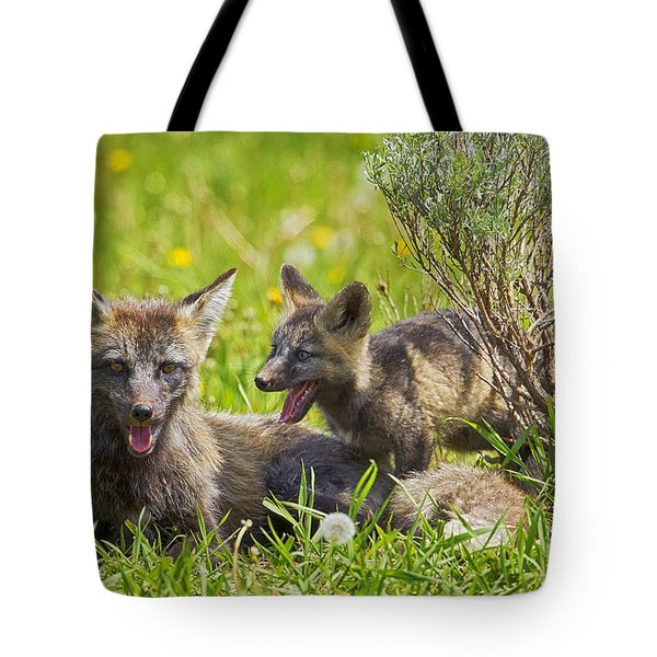 Tote Bag featuring the photograph My Shadow by Aaron Whittemore