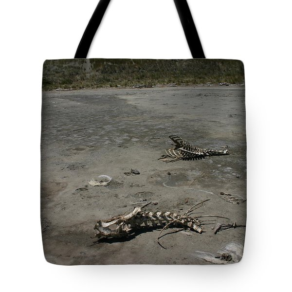 Tote Bag featuring the photograph Two Or 2 Halves Of 1 by Marie Neder