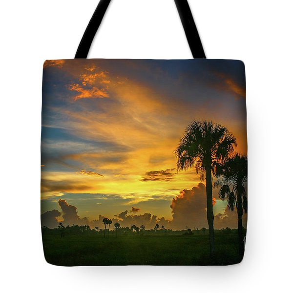 Tote Bag featuring the photograph Two Palm Silhouette Sunrise by Tom Claud