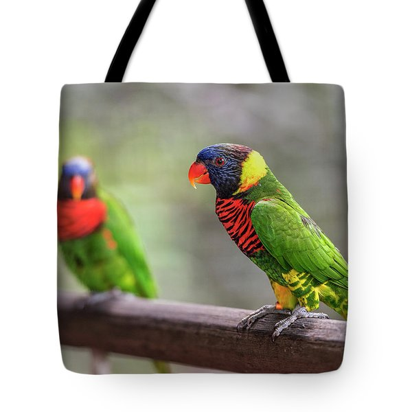 Tote Bag featuring the photograph Two Parrots by Pradeep Raja Prints