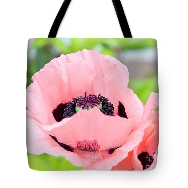 Two Pink Poppies Tote Bag