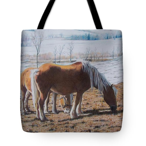 Two Ponies In The Snow Tote Bag