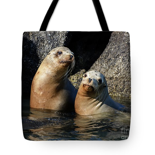 Two Quiet Sea Lions Tote Bag