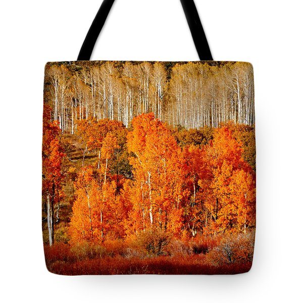 Two Rows Of Aspen Tote Bag by Marcia Socolik