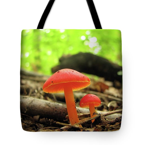 Two Shiny Red Mushrooms Tote Bag