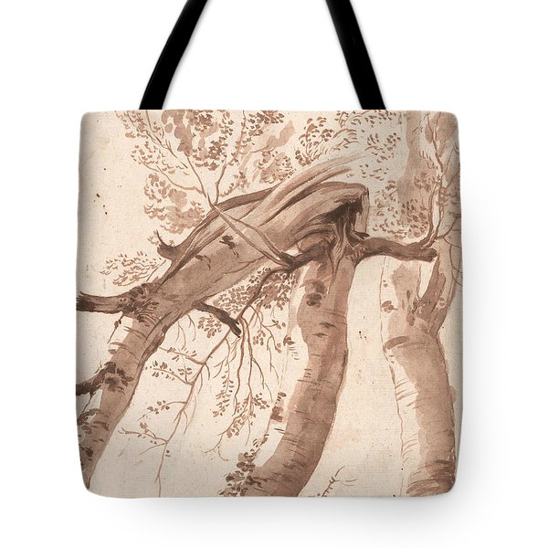 Two Silver Birches, The Front One Fallen Tote Bag