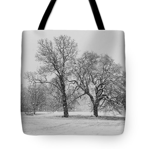 Tote Bag featuring the photograph Two Sister Trees by Louis Dallara