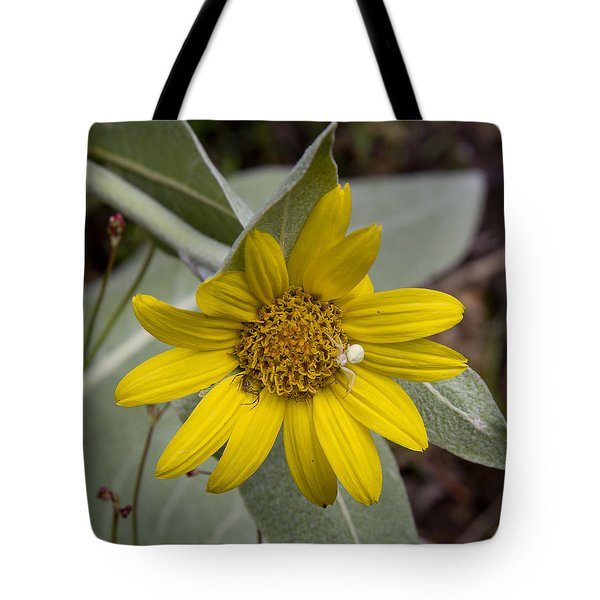 Two Spiders Tote Bag