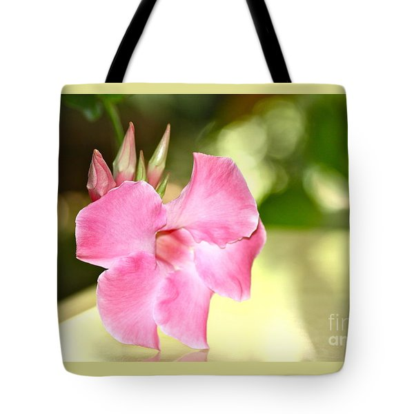 Two Step Tote Bag by Cathy Dee Janes