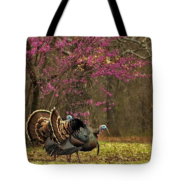 Two Tom Turkey And Redbud Tree Tote Bag by Sheila Brown