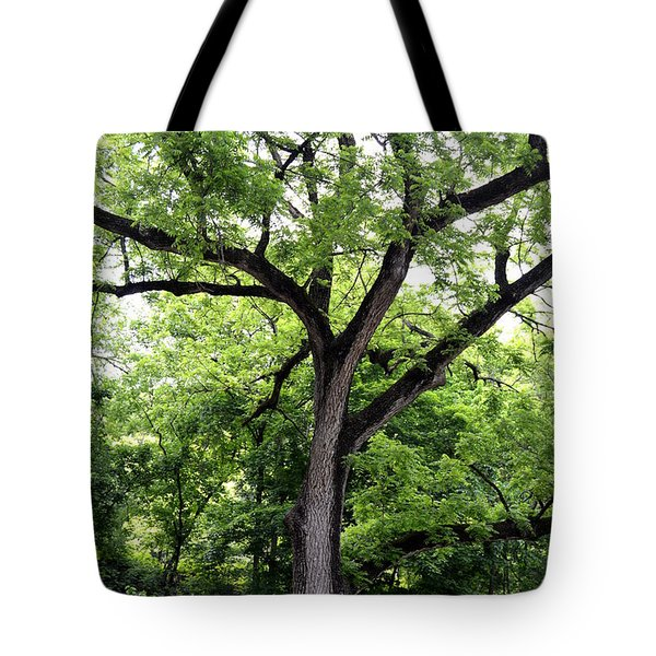 Tote Bag featuring the photograph Two Tone Tree by W And F Kreations