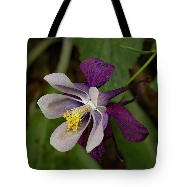 Tote Bag featuring the photograph Two Toned Columbine by Jean Noren