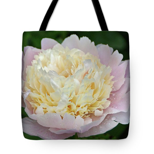 Tote Bag featuring the photograph Two-toned by Sandy Keeton
