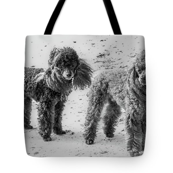 Two Toys B/w Tote Bag