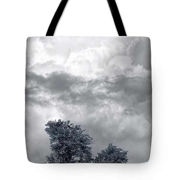 Two Trees #9249 Tote Bag by Andrey Godyaykin