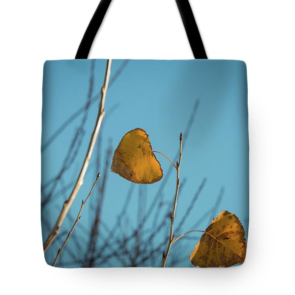 Tote Bag featuring the photograph Two Warriors  by Ana V Ramirez