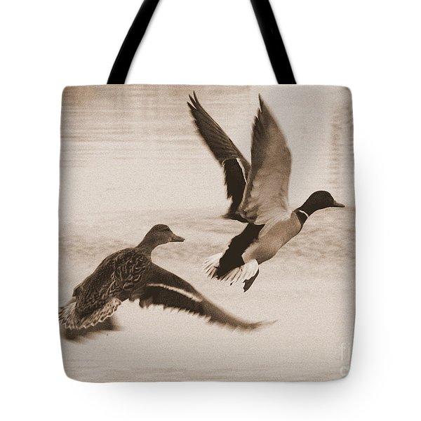 Two Winter Ducks In Flight Tote Bag by Carol Groenen