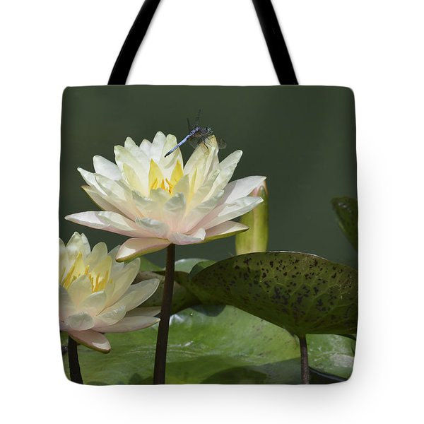 Two Yellow Water Lilies Tote Bag by Linda Geiger