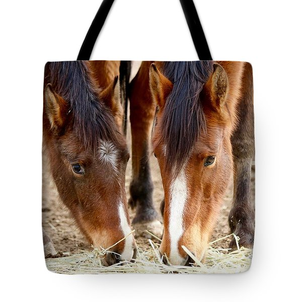 Two Young Friends Tote Bag