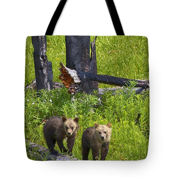 Tote Bag featuring the photograph First Spring by Aaron Whittemore