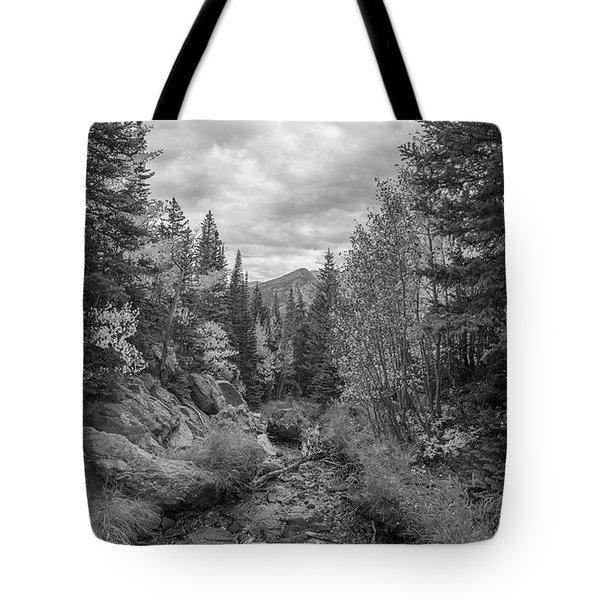 Tyndall Creek Bw  Tote Bag