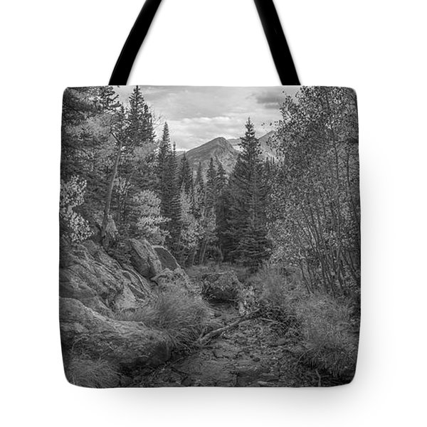 Tyndall Creek Panorama Bw Tote Bag