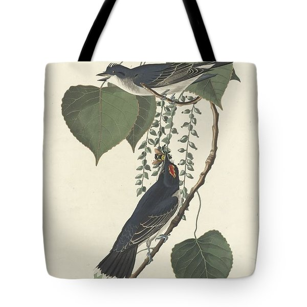 Tyrant Flycatcher Tote Bag by Rob Dreyer