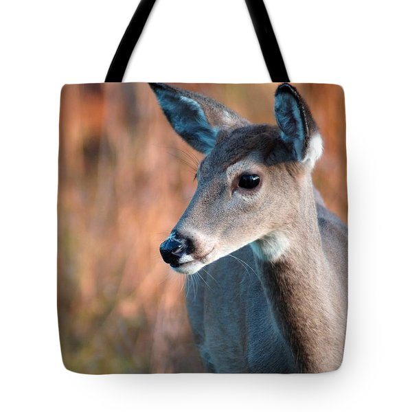 Tzavaot Tote Bag by Bill Stephens