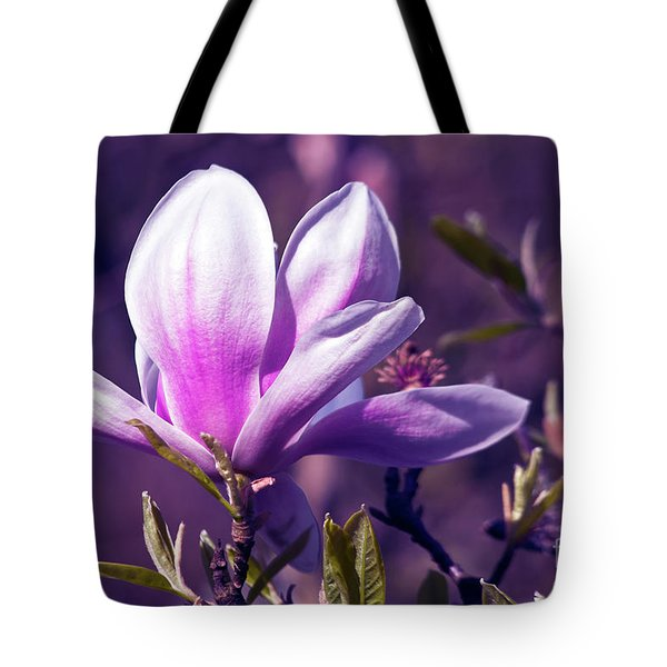 Tote Bag featuring the photograph Ultra Violet Magnolia  by Silva Wischeropp
