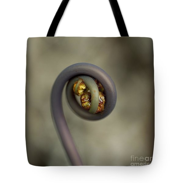 Tote Bag featuring the photograph Uluhe Fiddlehead by Charmian Vistaunet