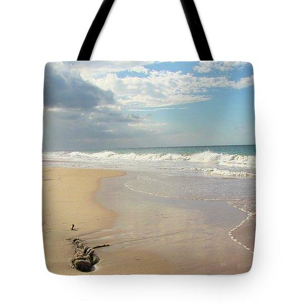 Un Paseo En La Playa Tote Bag