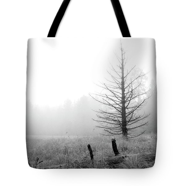 Unadorned Tote Bag