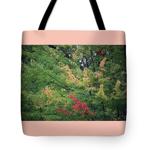 Tote Bag featuring the photograph Undecided Deciduous by Ellen Barron O'Reilly