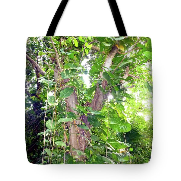 Tote Bag featuring the photograph Under A Tropical Tree With Vines by Francesca Mackenney