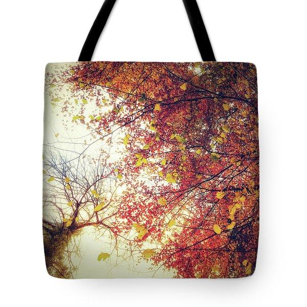 Under An Autumn Sky Tote Bag