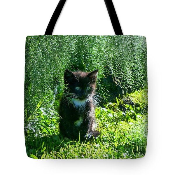 Kitten Under The Asparagus Ferns Tote Bag