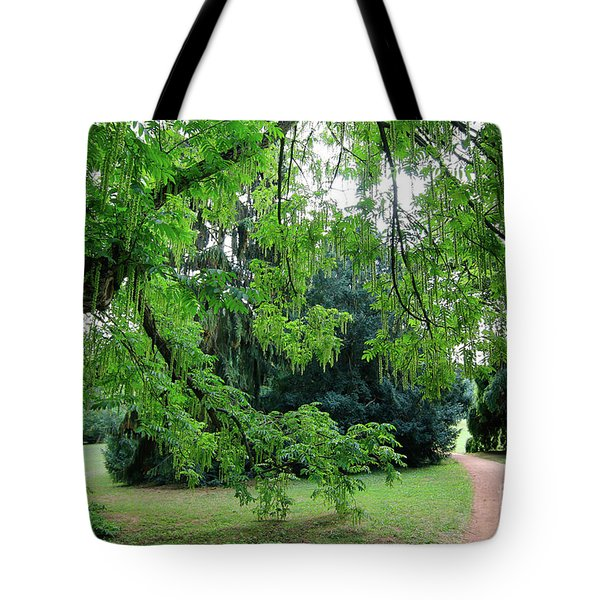 Tote Bag featuring the photograph Under The Branches Of A Large Tree by Michal Boubin