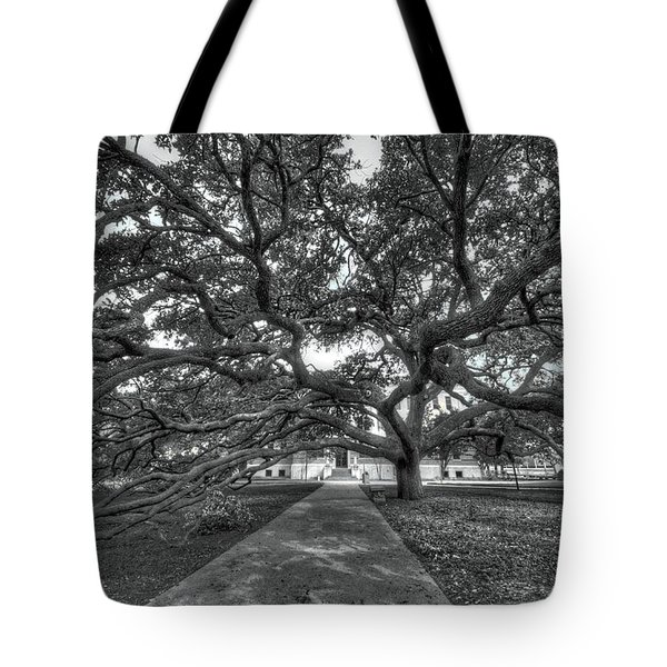 Under The Century Tree - Black And White Tote Bag
