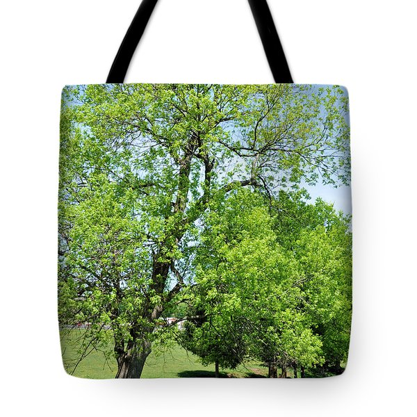 Under The Oak Tote Bag by Jan Amiss Photography