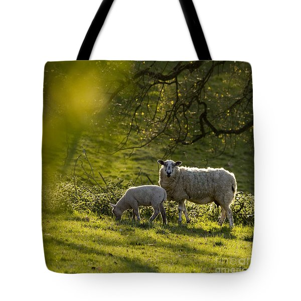 Under The Setting Sun Tote Bag