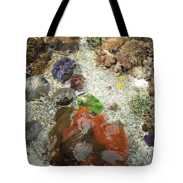 Tote Bag featuring the photograph Under Water Life by Carol Lynn Coronios