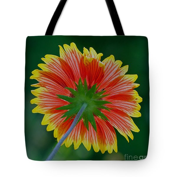 Under Your Spell Tote Bag by Larry Nieland