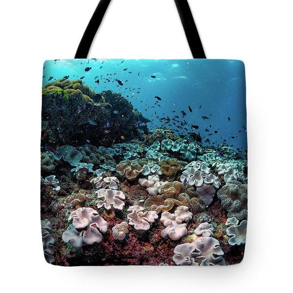 Underwater Community Tote Bag