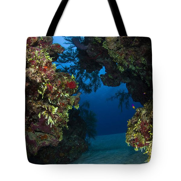Underwater Crevice Through A Coral Tote Bag by Todd Winner