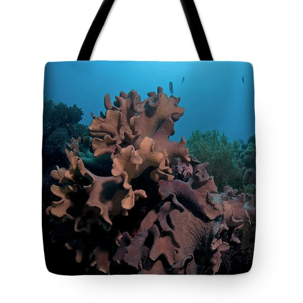 Tote Bag featuring the photograph Underwater by Rico Besserdich