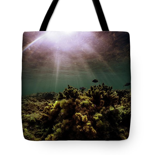 Underwater Sunset Tote Bag