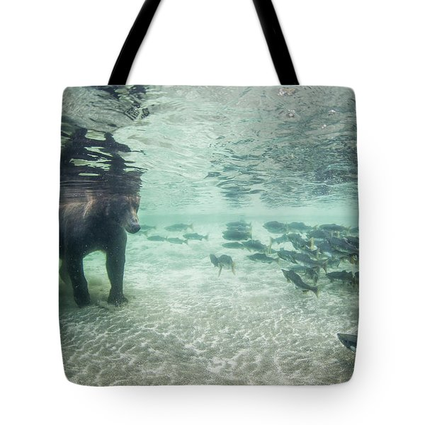 Underwater View Of Coastal Brown Bear Tote Bag